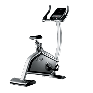 SK9000 Professional upright bike