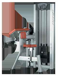 Bíceps X130
